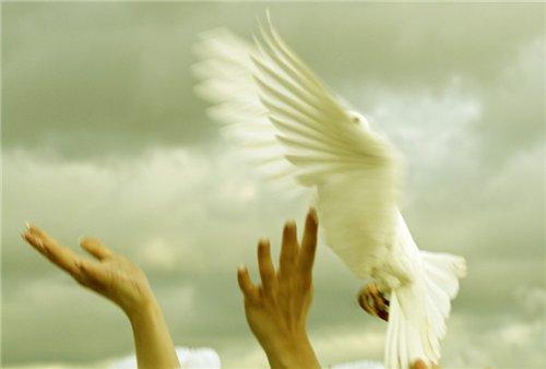 Любовь и свобода – это прекрасно.