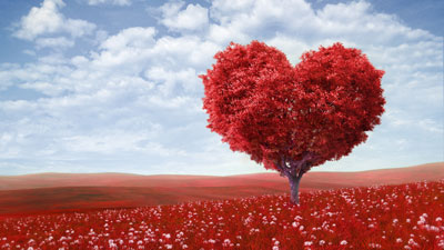 Научиться любви нельзя.