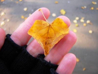 Любовь и осознание - два пути духовного роста