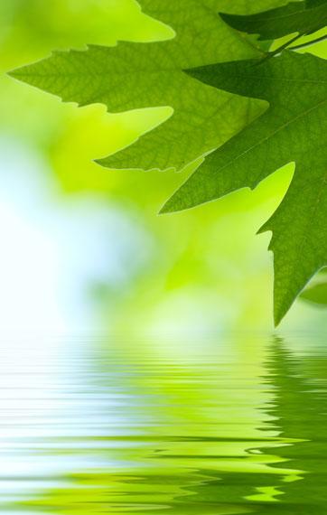 Самодостаточность – это наша природа.