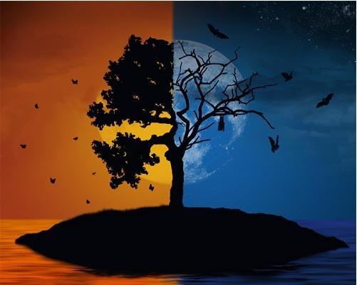 Что такое Медитация и Концентрация