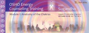 Обучающий тренинг для ведущих ОШО медитаций