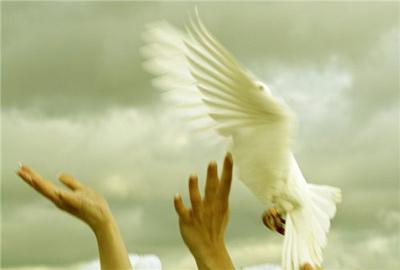 Почему людей так легко заставили молиться священникам. Часть I.