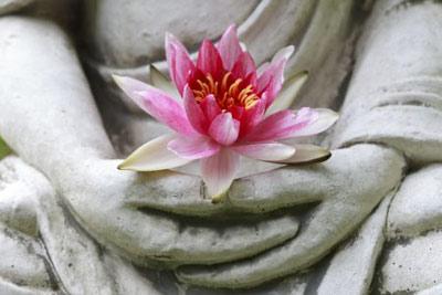 Из уст Будды.