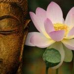 Каменный Будда. Часть I.