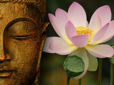 Каменный Будда. Часть III.
